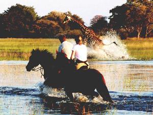 Delta de l'Okawango
