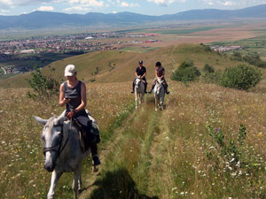 A 4 pattes dans les Carpates